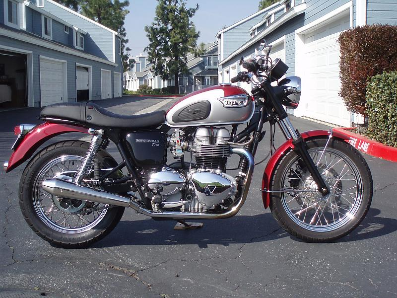Opinions On Purchase Of 2003 Bonneville T100 Please Triumph Forum
