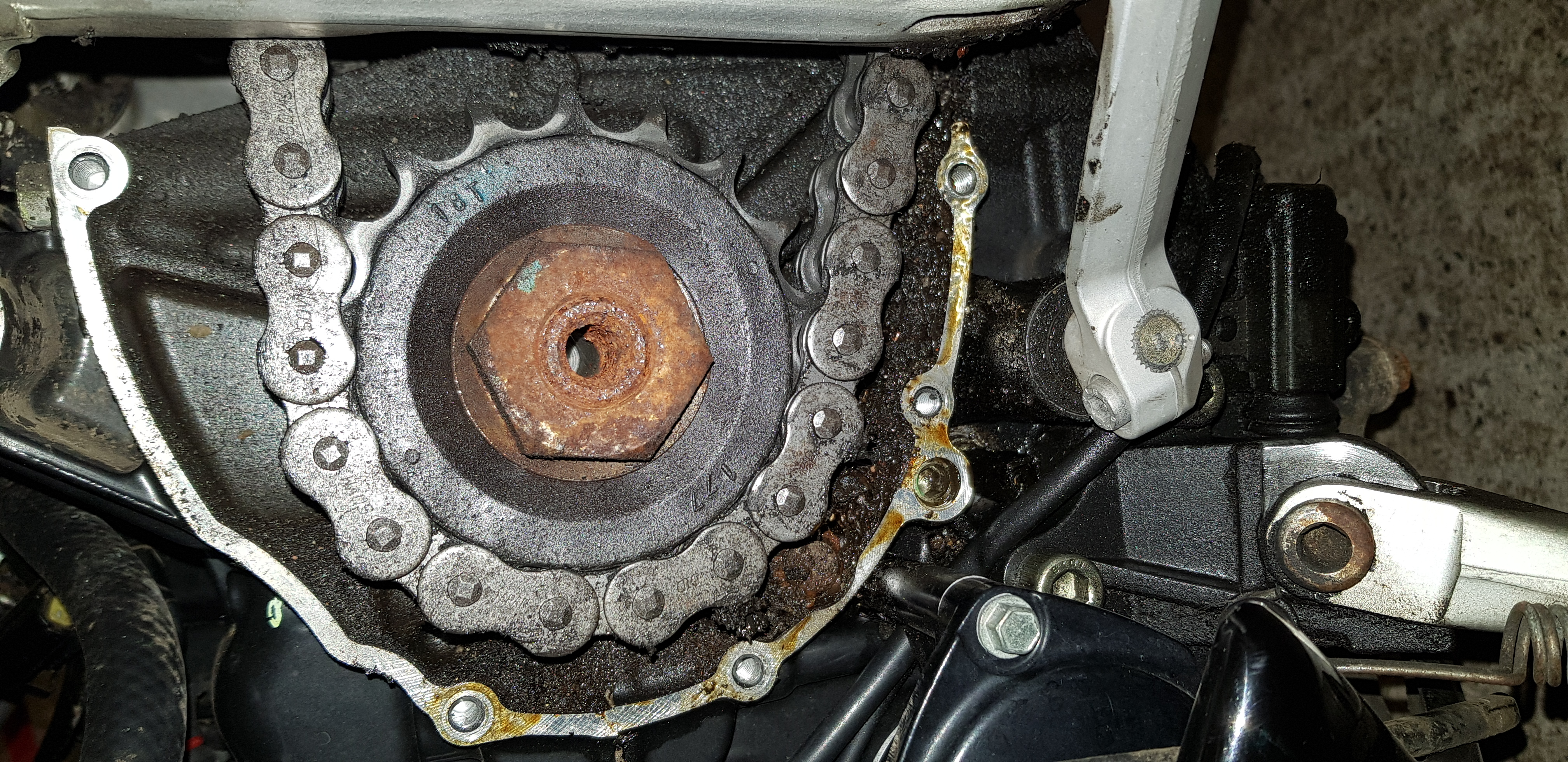 Front sprocket oil leak - 2002 955i - Triumph Forum: Triumph Rat