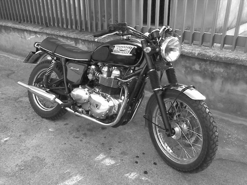 bonneville pics - page 115 - triumph forum: triumph rat motorcycle