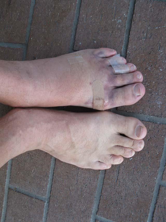 Name:  feet.jpg Views: 503 Size:  84.7 KB