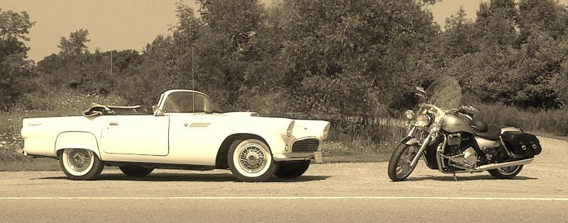 Thunderbird Pics-img-20140809-00479-copy-3-.jpg