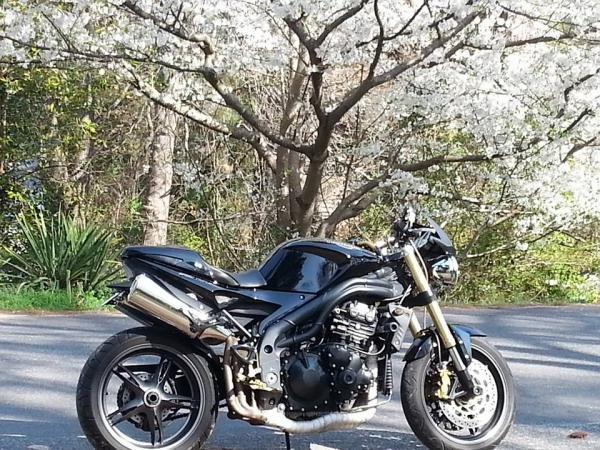 Showcase cover image for Demolish's 2005 Triumph Speed Triple