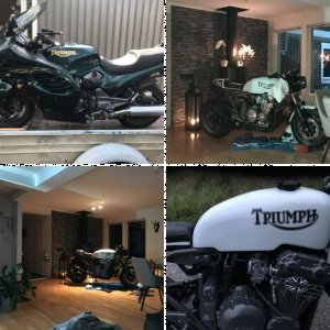My Triumph Trophy 1200 cafe racer build