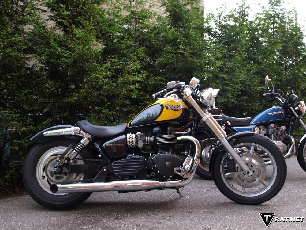 triumph forum triumph rat motorcycle forums gt cruisers gt cruisers